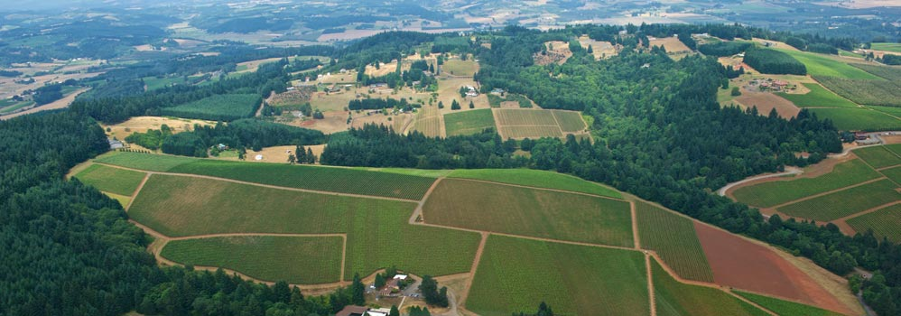 Portland Oregon wine tasting country helicopter tours
